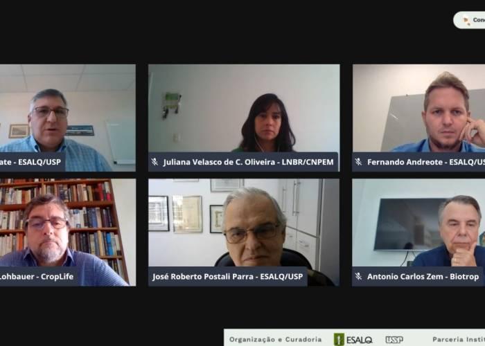 Manejo integrado de pragas e doenças da cana foram debatidos durante encontro - EsalqShow